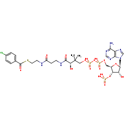 Picture of 4-chlorobenzoyl-CoA (click for magnification)