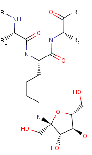 Picture of [protein]-N6-D-fructosyl-L-lysine (click for magnification)