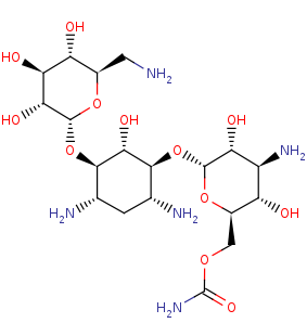 Picture of 6''-O-carbamoylkanamycin A (click for magnification)