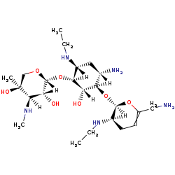 Picture of 2'-N-ethylnetilmicin (click for magnification)